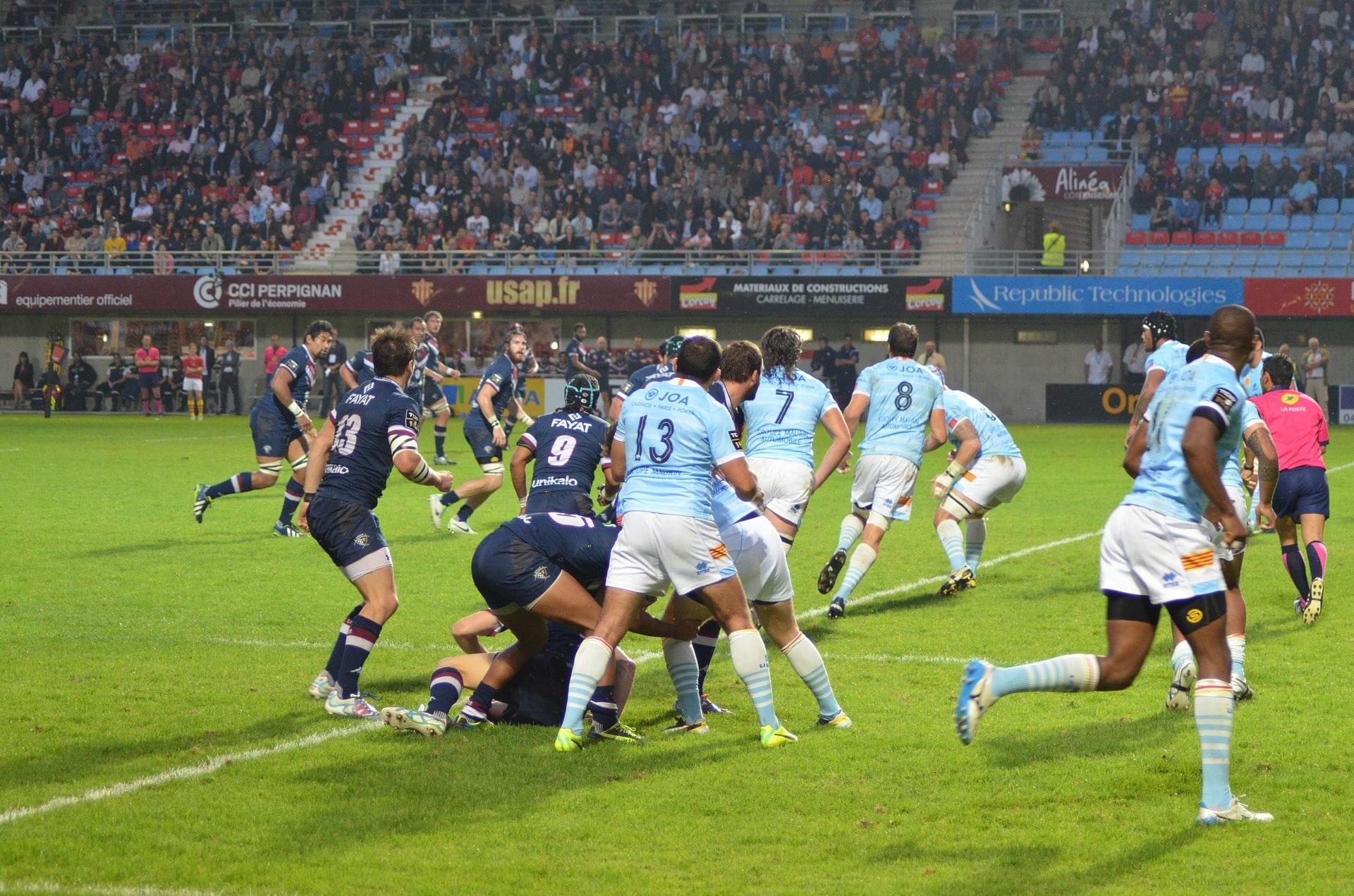 Area Economica - gestione società rugby - GeSoSport